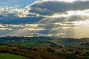 Foto di Picotti Tito